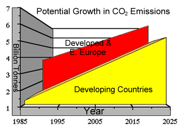 The Potential Growth Of CO2is frightening.  Rainforest's help a great deal in regulating the world's climate and atmosphere. The broad leaf trees of the rainforests absorb carbon dioxide from the air and release oxygen. With fewer rainforests less carbon dioxide is being absorbed. More carbon dioxide means that more heat from the sun stays locked up in the atmosphere causing the devastating greenhouse effects. 