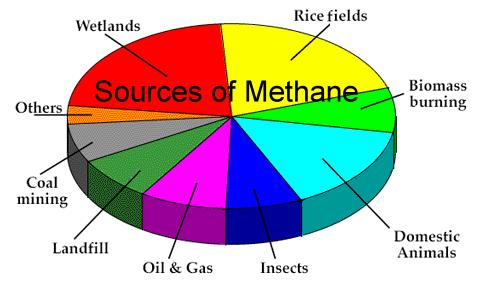 Methane is increasing in the atmosphere, at an even faster rate than carbon dioxide. Methane is released as vegetation rots under water. This is what is happening in millions of square miles of rice fields throughout Asia. As the worlds population grows, so does the demand for more rice to be grown, thus releasing even more methane.